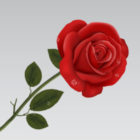 Profile photo of Rose