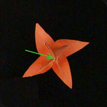 origami-paper-tulip-How To Make Origami Tulip Flower - Step by step