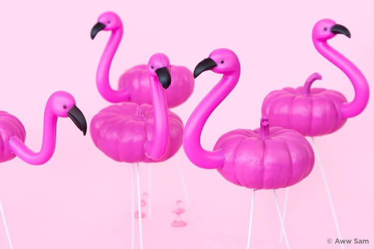 Flamingo pumpkins