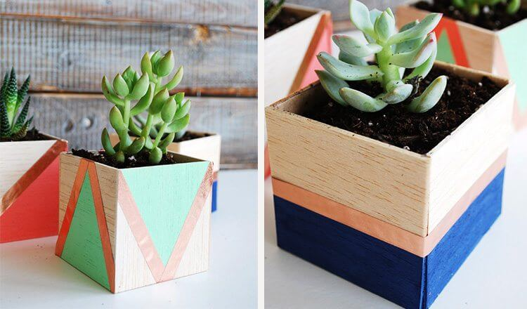 Succulents as Mother's Day gifts Mother's Day Craft Ideas for Kids