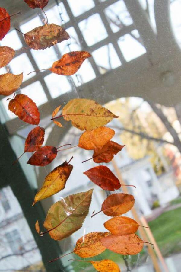 Leaf Crafts on Windows Leaf Crafts for Preschoolers
