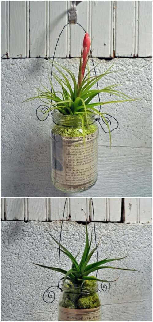 Recycled Glass Bottle Planter for Balcony