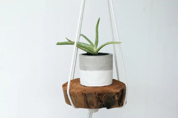 Textured or No textures Hanging Planter Ideas for Indoor Home Decoration