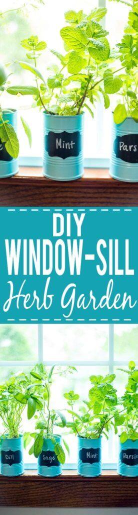 Window Sill Recycled Herb Garden DIY Herb Garden Ideas for Indoor & Outdoor Decor