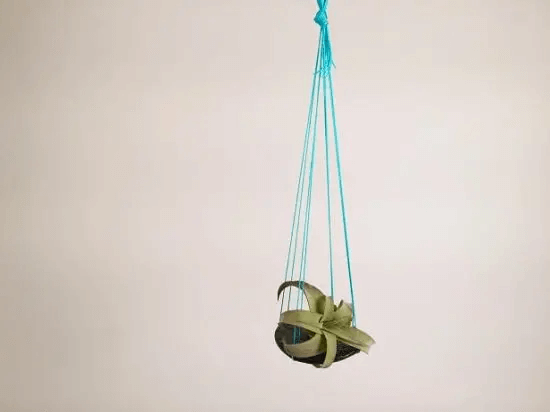 DIY String Hanging Planter