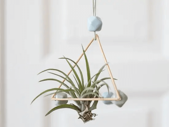 The Not-Bermuda Triangle Hanging Planter Ideas for Indoor Home Decoration
