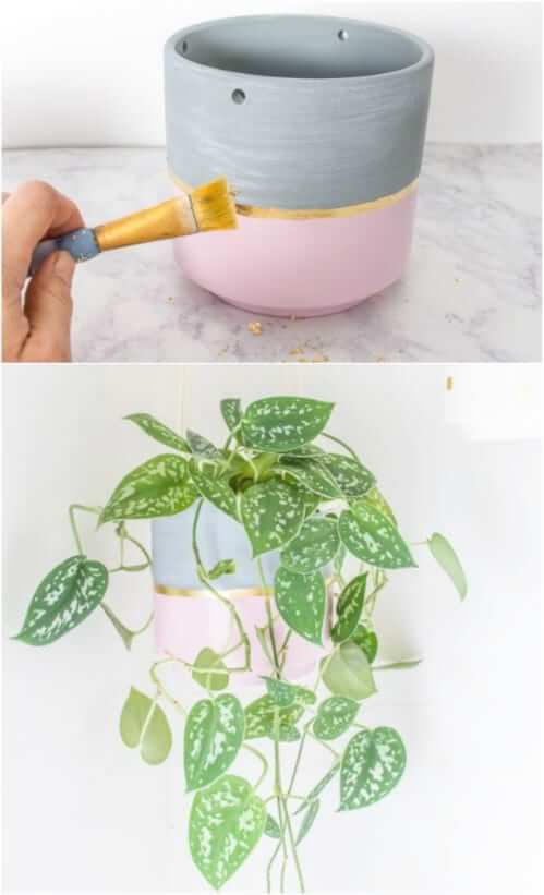 Money Plant Pot Idea for Home Decoration