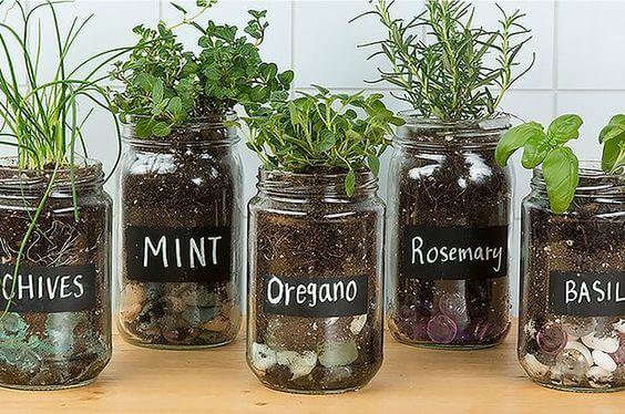 Old Jar Herb Garden DIY Herb Garden Ideas for Indoor & Outdoor Decor