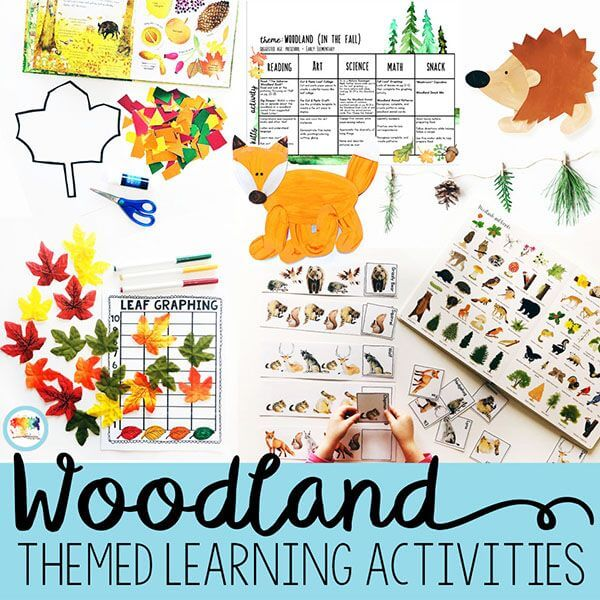Leaves everywhere, here and there also - Leaf Activities for Preschoolers