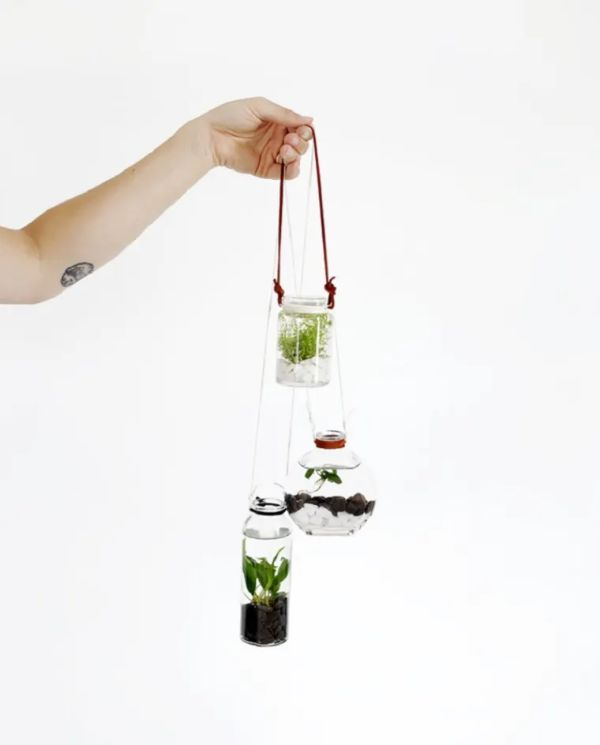 DIY Hanging Water Garden