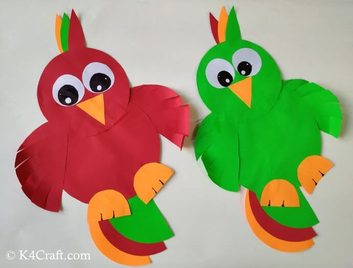 Colourful Cartoon Parrot Activity