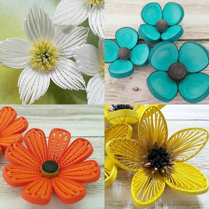"""Flower quiling designs for you """"100 Quilling Flower Designs by Hae Kyoung Kim"""" is locked 100 Quilling Flower Designs by Hae Kyoung Kim"""